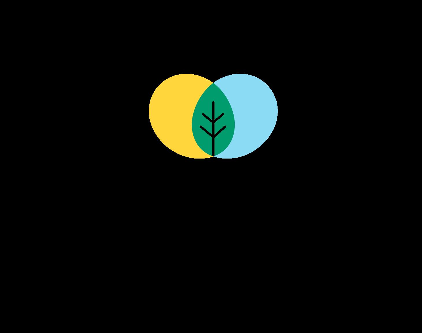 logo-kukula